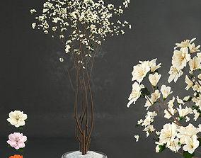 3D model Decorative wood