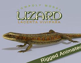 Lizard Lacerta Vivipara 3D model