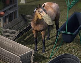 Equestrian Props 3D model