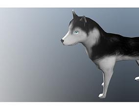 3D model Dog Animation