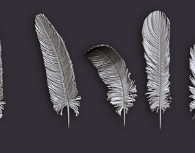 wing Feathers for 3d print 5 types