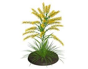 3D model WEED floret