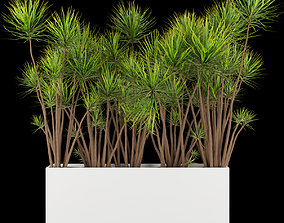 3D model Collection plant vol 214