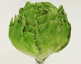 3D asset Low poly lettuce