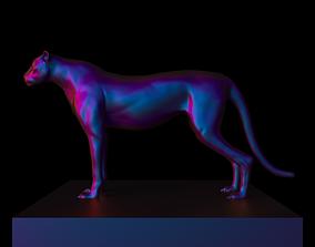 sculpt 3D Cheetah