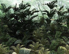 Set tropical plants 10 types 3D asset