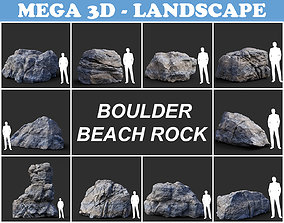 Gray Boulder Beach Rock Collection 210110 3D asset