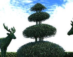 3D model Plant decoration