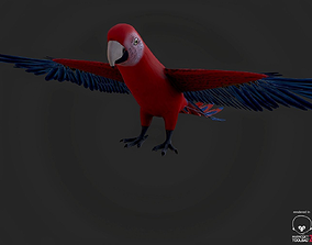 red-crowned 3D Parrot