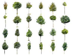 3D 25 Cutout Trees Collection