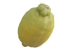 realtime Photorealistic 3D Scanned Lemon 01
