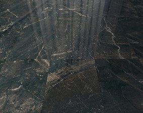 3D model Marble Floor Carelia Black Set 3