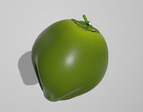 Fresh Coconut 3D model