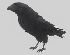 animated Animated Low Poly Raven Model With PBR Materials