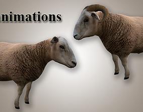 Ram and Sheep 3D asset