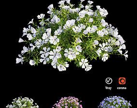 Plant Flower set 09 3D model