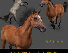 saddle animated Ultimate Horse Collection - 3d model