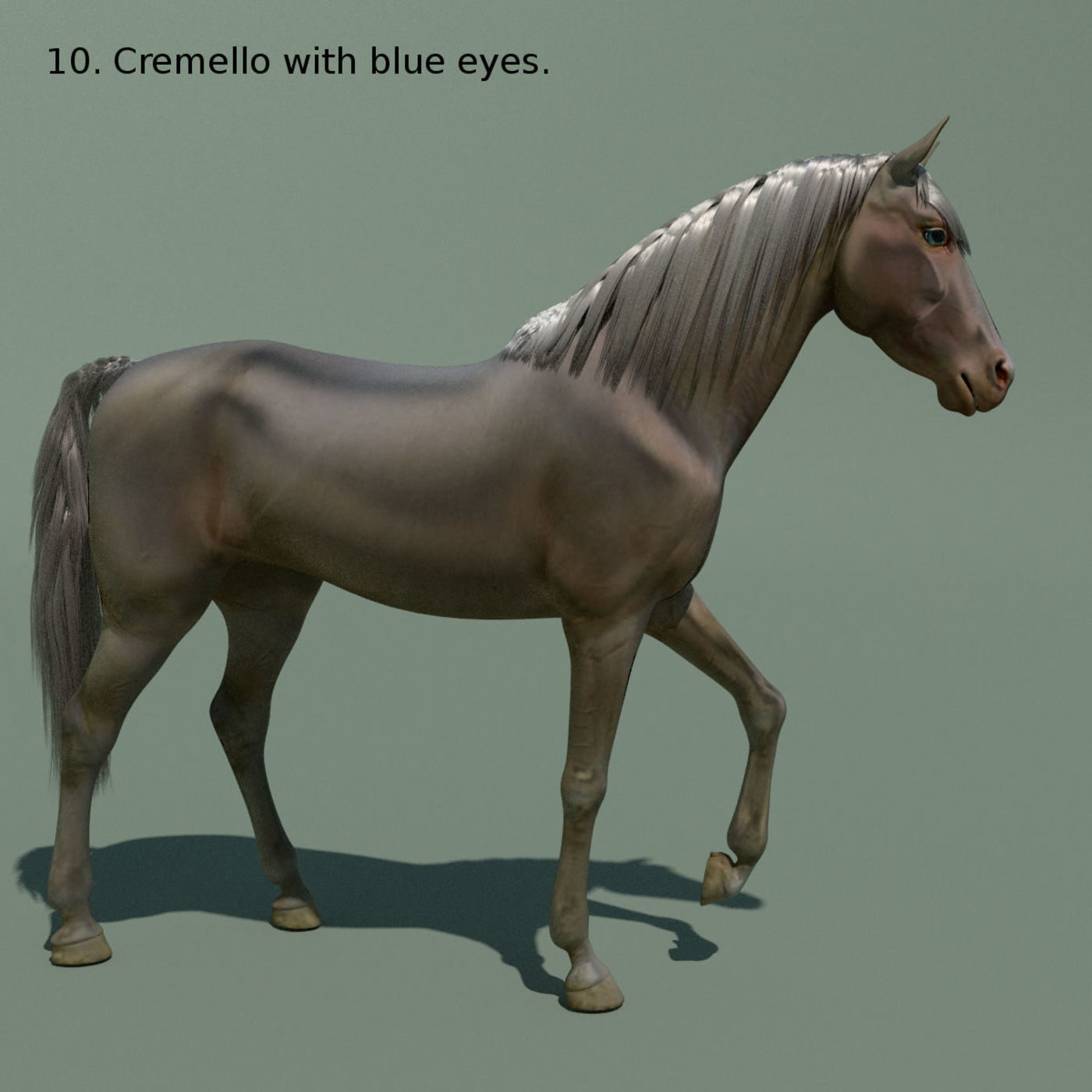 Animated horse 10 colours