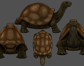 Turtle no texture only model in the archive 3D asset