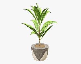 3D Plant artificial 04