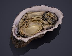 3D model realtime Oyster
