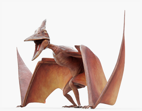 3D model game-ready Pterodactyl Animated