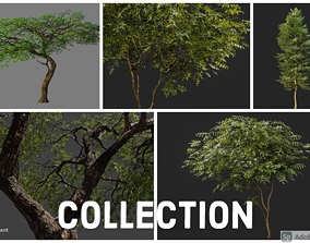 3D All Trees Collection