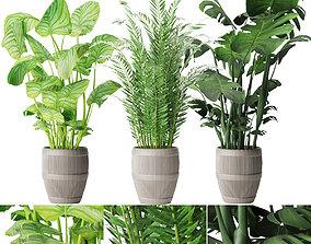 3D Collection plant vol 4