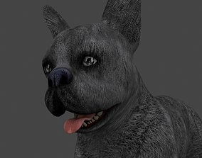 3D model MBUL-023 Animated Dog