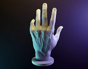 My hand 3D print model