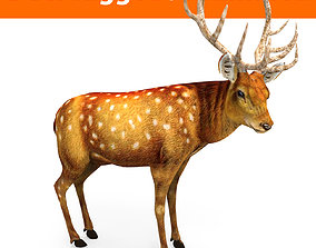 animated Deer rigged animated Model 3D