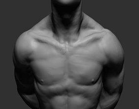 Free Male Anatomy 3D