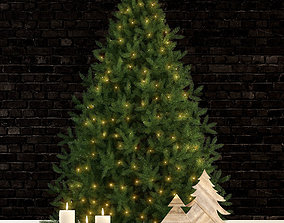 Plants collection 70 christmas tree 3D