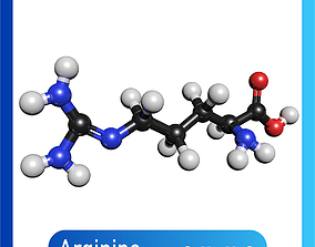 Arginine 3D Model C6H14N4O2