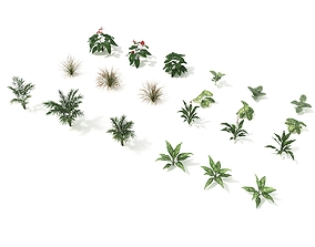 Shrub and Bush Colection 2 3D