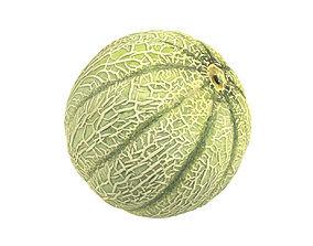 Photorealistic Charentais Melon 3D Scan 3dscan