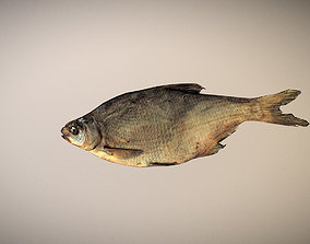3D asset photorealistic dried salty fish scan