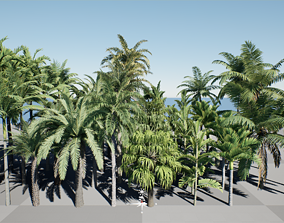 HQ Plants Volume 4 Palms for unreal engine 4 set of 40 3D