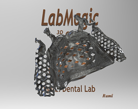 New Digital RPD Frame 3D printable model