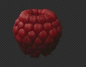 Raspberry 3D asset