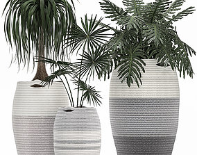3D model Decorative plants in 6