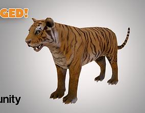 3D model rigged VR / AR ready Tiger