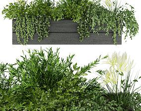 3D Collection plant vol 90