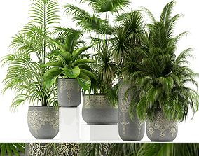 3D model Plants collection 147 handmade pots East style
