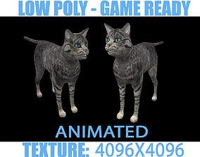 Cat Animated 3D model