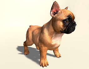 3D model animated game-ready Pug Dog