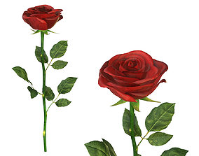 3D model PBR Single beautiful red rose