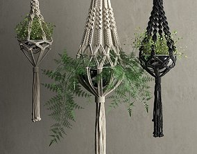 Macrame Hanging Pots with Plants 3D model