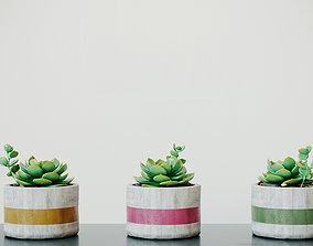 Decorative Cactus Vase 3D model