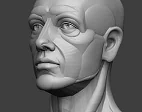 3D printable model Planar simplified male head